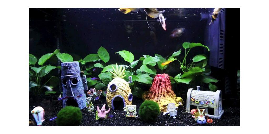 decoracion para acuarios