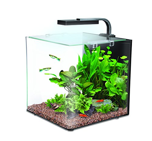 Interpet Nano Kit de acuario LED completo