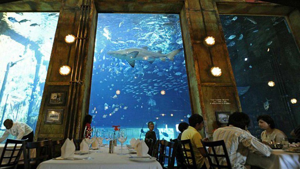 Acuario Ushaka Marine World